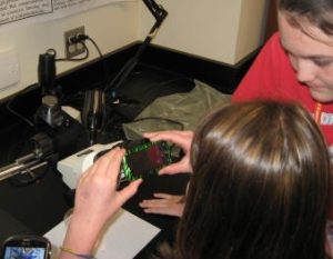 A highlight for some of the girls was snapping photos of fossils on their phones, through the dissecting scope!